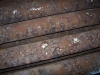 Pitting corrosion on waterside of boiler tubes